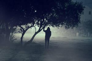 the mist by davidvelezfotografia