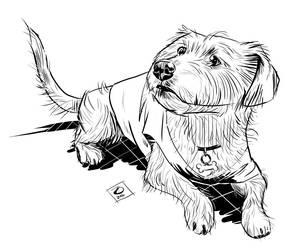 odandiee dog hamming digital inks LG by jetdog-art
