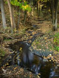 Beaver brook by PhotoDragonBird