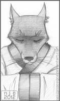 TMNT portrait: Master Splinter by nekojindesigns