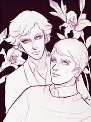 Sherlock and John by Micchu