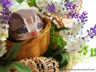 Kitten in The Basket by Vissyscrafts