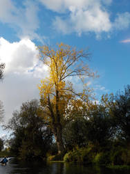 Autumn light along the Niers by langeboom