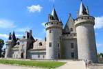 Castle of Sully by AnimeNinja101