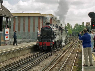 15 Guinea Engine by Brit31