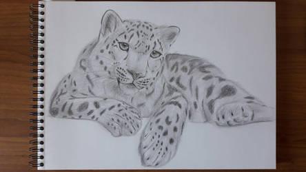 Trying My Best: Snow Leopard by Svenshinhan