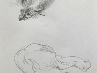 Man v. Rhino by goeyoshi