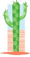 Cactus by Hobbit1978