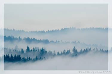 Mistical Morning by phaythe