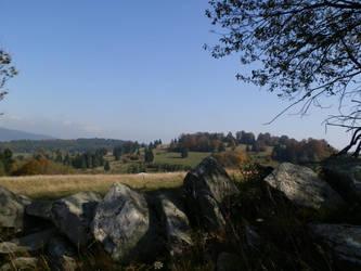 View by Ninusqa010309