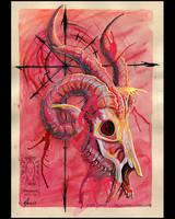 Skull by drakhenliche