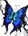 Liquid Butterfly by drakhenliche