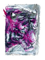 Tiger by drakhenliche