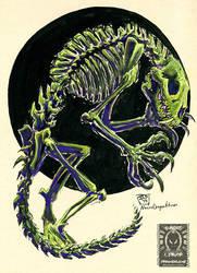 Inktober17 - Skeletal Werebeast by drakhenliche