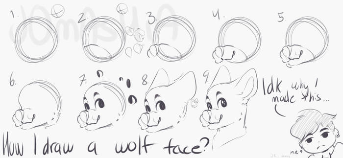 How I Draw A Wolf Face By P4le On Deviantart