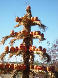 pumpkin tree by man1nblack