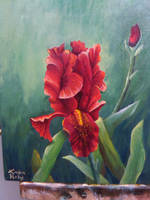 Iris by Tadaishar