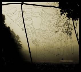 Cobweb by scarygodmother