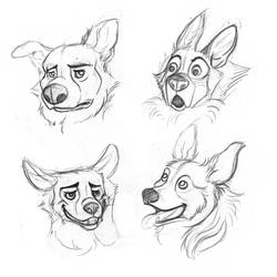 Doggies sketches by IllegalHamsterThe