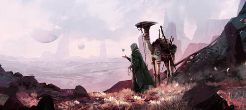 Traveler by amirzand