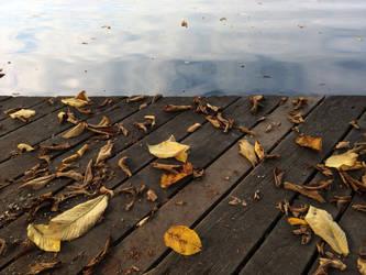 Leaves by the Lake by BlackWalrus19
