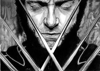 Wolverine by khinson