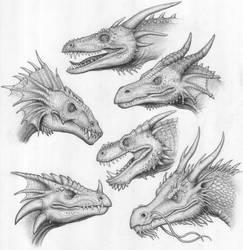 Cabezas de Dragones by BrokenMachine86