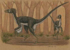 Dromaeosaurus albertensis by BrokenMachine86