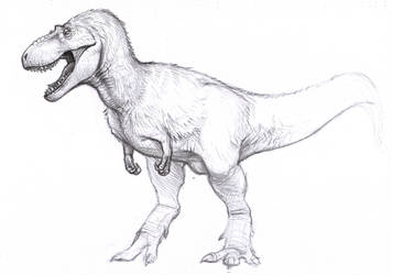 Daspletosaurus sketch by BrokenMachine86