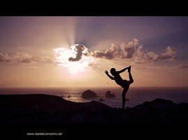 sunshine of the spotless mind by dcamacho