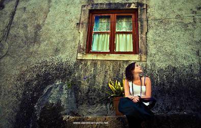 the window by dcamacho