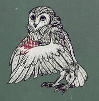 night owl by Folkwe