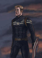 Captain America: The Winter Soldier by Folkwe