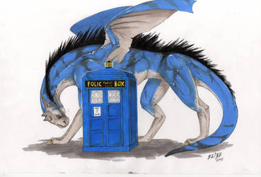dragon and TARDIS by no-life94