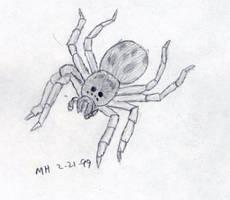 Spider. by DocMallard