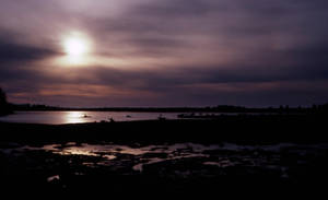 Oregon Coast-2 by DocMallard