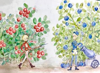 Berry war by Sildesalaten