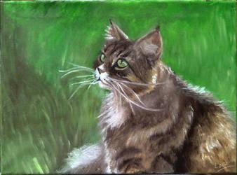 Cat study by 7AirGoddess3