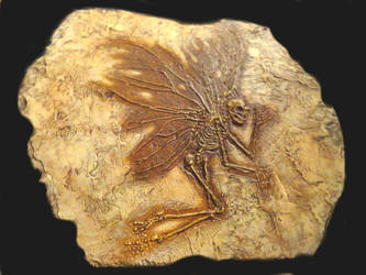 Fossil Fairy by KevinNichols