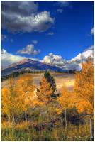 Autumn Along Mt. Meeker by kkart