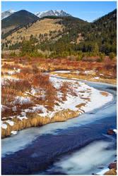 Winter Wilderness by kkart