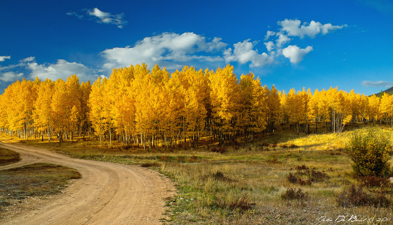 Fall Rural Roads by kkart