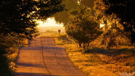 Country Roads To Home by kkart