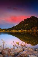 Autumn's Ascent by kkart