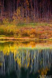 Autumn Secrets by kkart