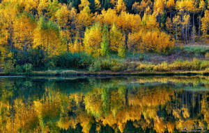 Fall Reflections by kkart