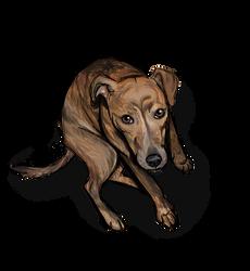Little Wuffer Pupper by NoteS28