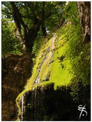 The Green Fall by Morganenn