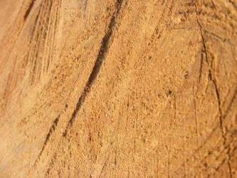 Wood by Morganenn