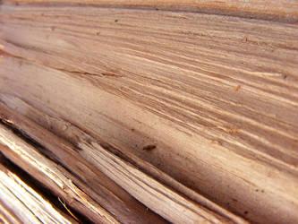 Wood IV by Morganenn